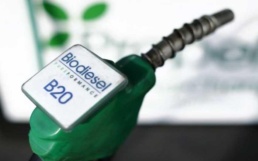 pengertian bioenergi industri biodiesel